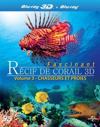Récif de corail fascinant - Chasseurs et proies