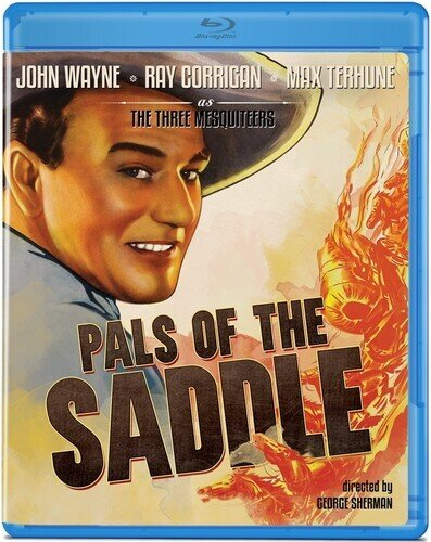 Pals of the Saddle (1938) (s/w)