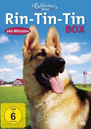 Rin-Tin-Tin Box (Édition Collector, 2 DVD)