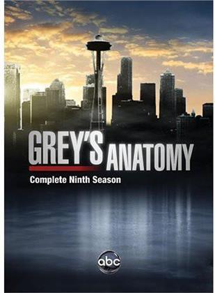 Grey's Anatomy - Season 9 (6 DVDs)