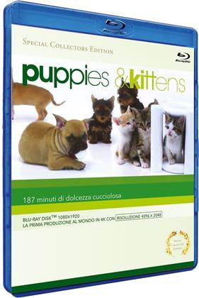 Puppies & Kittens (Collector's Edition, Edizione Speciale)