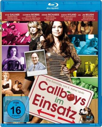 Callboys im Einsatz (2011)