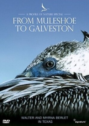 A Profile of Nature Special - From Muleshoe To Galveston