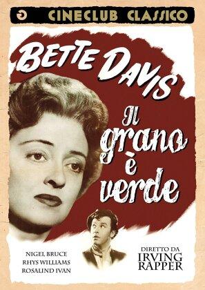 Il grano è verde - The corn is green (Cineclub Classico) (1945)