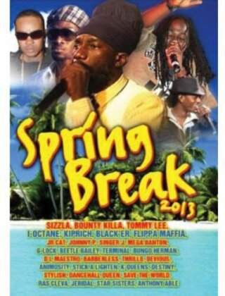 Various Artists - Spring Break 2013