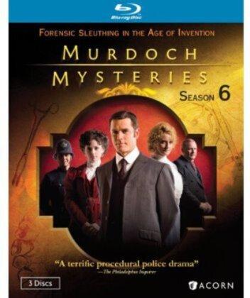 Murdoch Mysteries - Season 6 (3 Blu-rays)