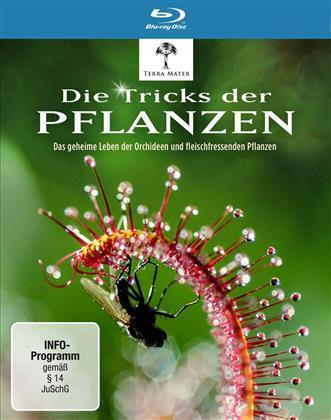 Die Tricks der Pflanzen (Digibook)