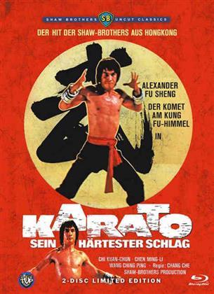 Karato - Sein härtester Schlag (1975) (Edizione Limitata, Blu-ray + DVD)