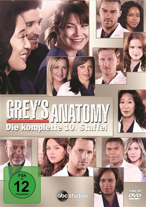 Grey's Anatomy - Staffel 10 (6 DVDs)