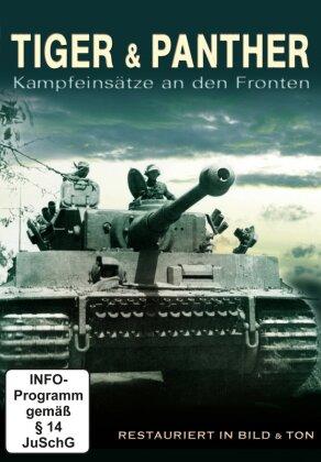 Tiger & Panther - Kampfeinsätze an den Fronten