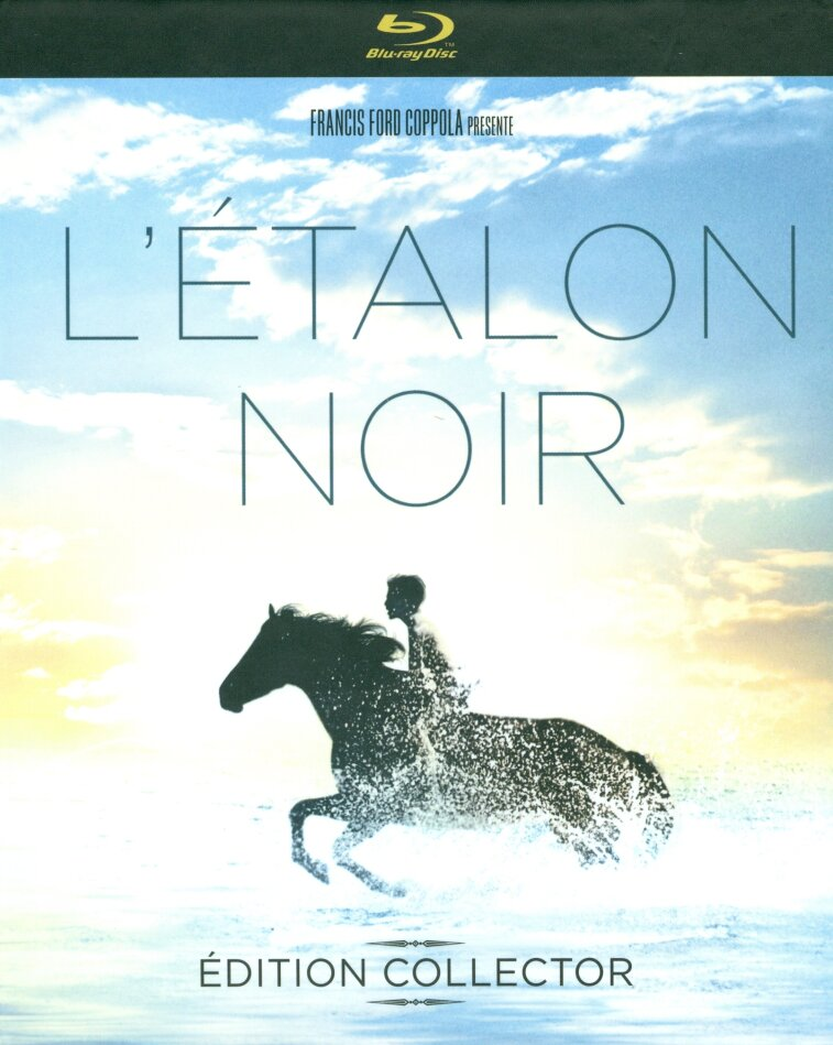 L'étalon noir (1979) (Collector's Edition, Digibook, Blu-ray + DVD)