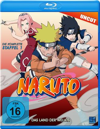 Naruto - Staffel 1 (Uncut)