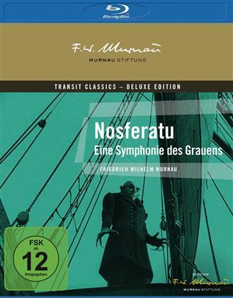 Nosferatu - Eine Symphonie des Grauens (1922)