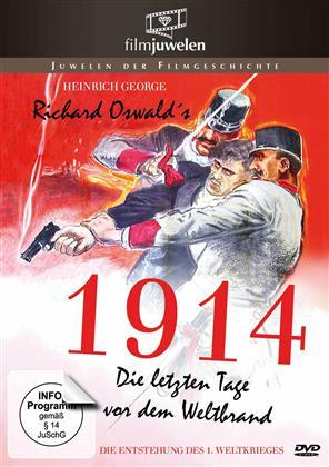 1914, die letzten Tage vor dem Weltbrand - (Filmjuwelen) (1931)
