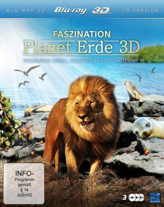 Faszination Planet Erde - Faszination Afrika, Galapagos und Korallenriff (3 Blu-ray 3D (+2D))