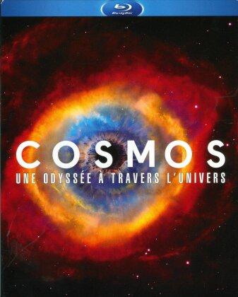 Cosmos - A Spacetime Odyssey (4 Blu-rays)
