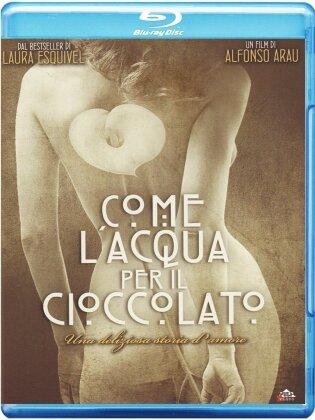Come l'acqua per Il cioccolato (1992)