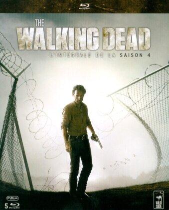 The Walking Dead - Saison 4 (5 Blu-rays)