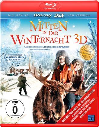 Mitten in der Winternacht (2013)