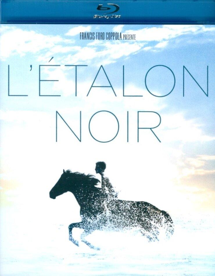 L'étalon noir - The Black Stallion (1979)