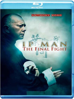 IP Man - The Final Fight (2013)