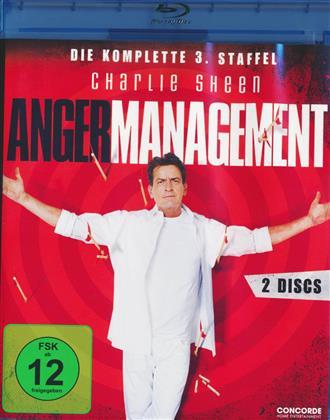 Anger Management - Staffel 3 (2 Blu-rays)