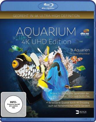 Aquarium - (Gedreht in 4K ULtra High Definition) (2014)