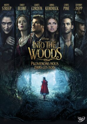 Into the Woods - Promenons-nous dans les bois (2014)