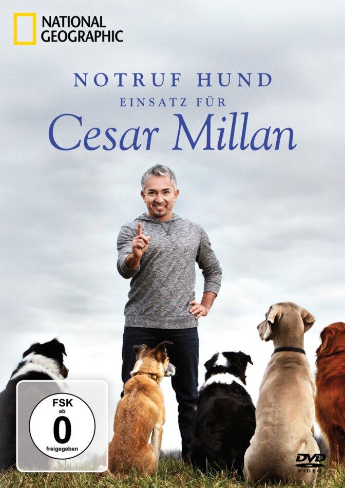 Notruf Hund - Einsatz für Cesar Millan - Staffel 1 (National Geographic, 2 DVDs)