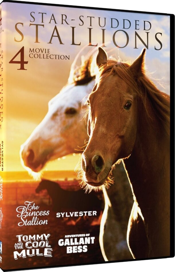 Star-Studded Stallions - 4 Movie Collection