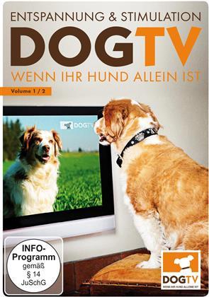 Dog TV - Wenn Ihr Hund allein Ist - Entspannung & Stimulation Volume 1/2
