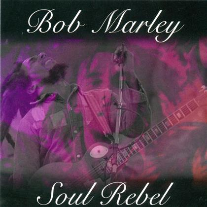 Bob Marley - Soul Rebel (2015 Version)