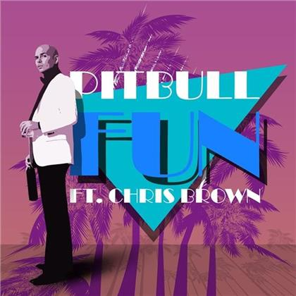 Pitbull Feat. Chris Brown feat. Chris Brown - Fun