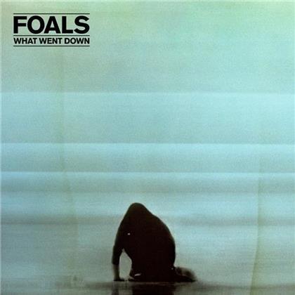Foals - What Went Down - Deluxe (CD + DVD)