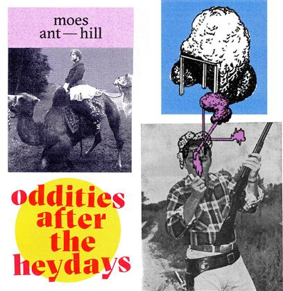Moes Anthill (Moe Der Barde) - Oddities After The Heydays (2 LPs)