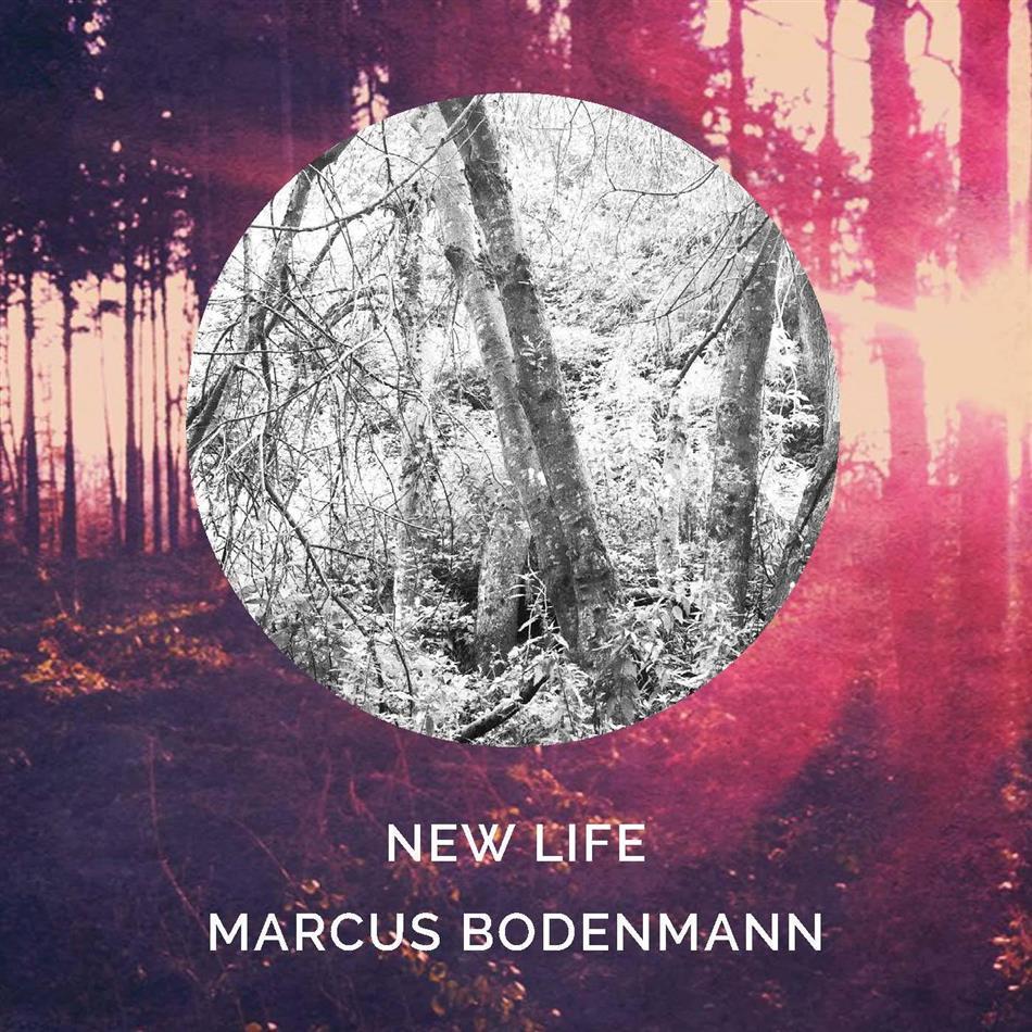 Marcus Bodenmann - New Life - Fontastix