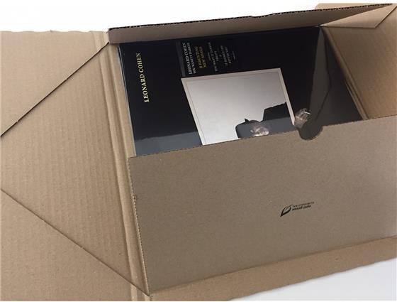 LP Verpackungskarton - 10 Kartons, mit Selbstklebeverschluss