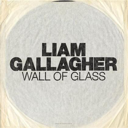 "Liam Gallagher (Oasis/Beady Eye) - Wall Of Glass - 7 Inch (7"" Single)"