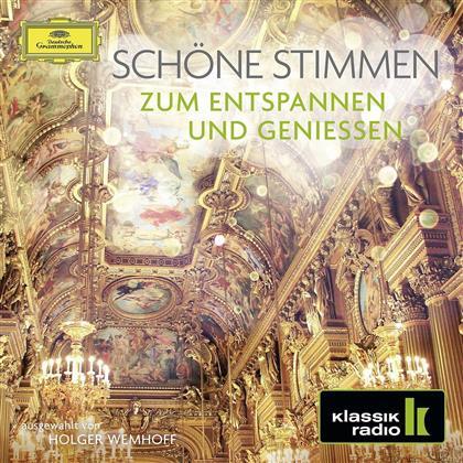 Divers - Schöne Stimmen - Zum Entspannen Und Geniessen (2 CDs)