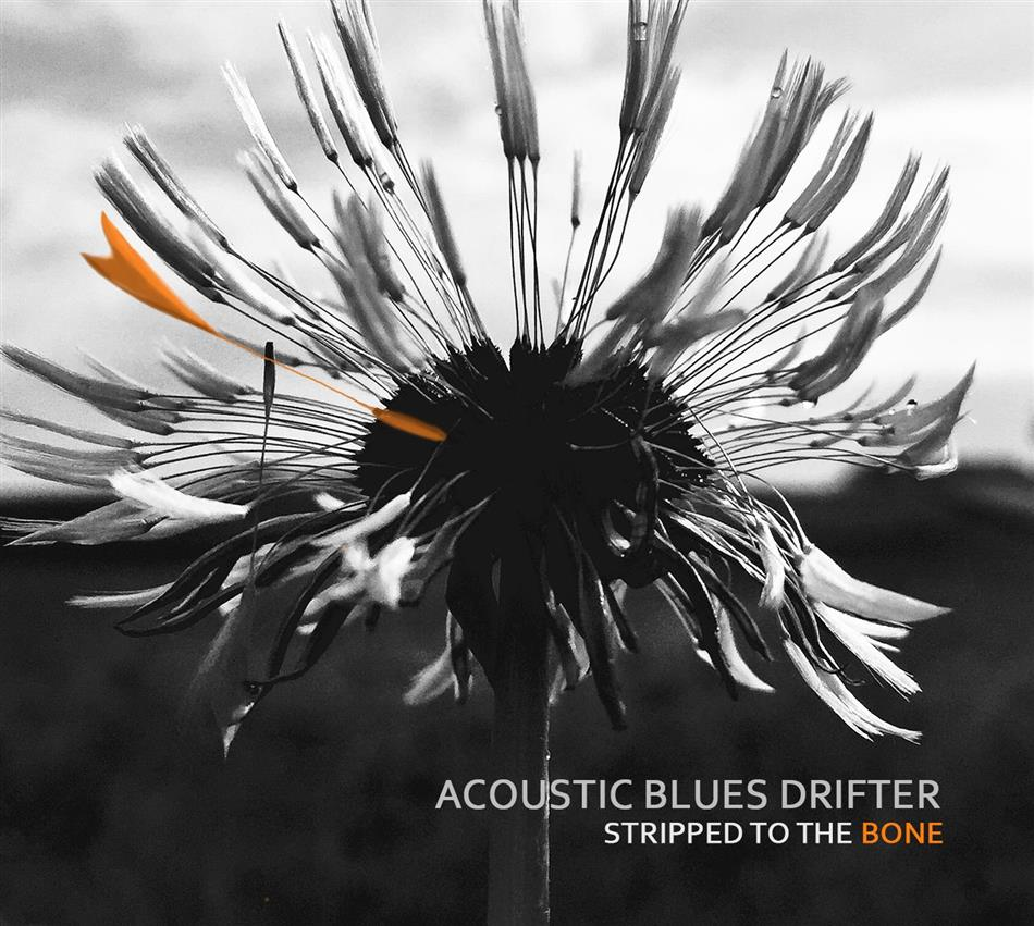 Acoustic Blues Drifter - Stripped To The Bone