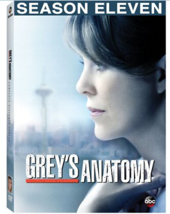 Grey's Anatomy - Season 11 (6 DVDs)