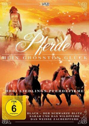Pferde - Mein grösstes Glück - Drei lieblings Pferde Filme (3 DVDs)