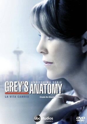 Grey's Anatomy - Stagione 11 (6 DVDs)