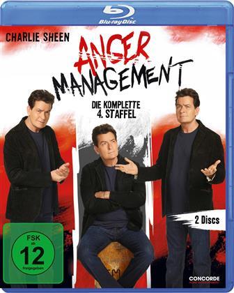 Anger Management - Staffel 4 (2 Blu-rays)