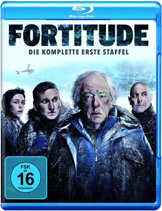 Fortitude - Staffel 1 (2 Blu-rays)