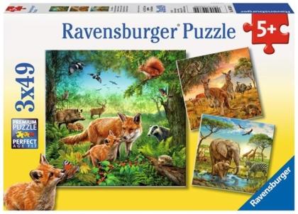 Tiere der Erde - 3 x 49 Teile Puzzles