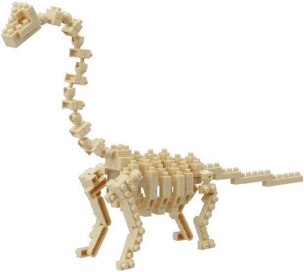 Brachiosaurus Skelett (Level 4)