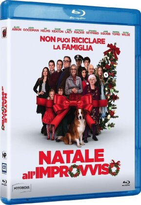Natale all'improvviso (2015)