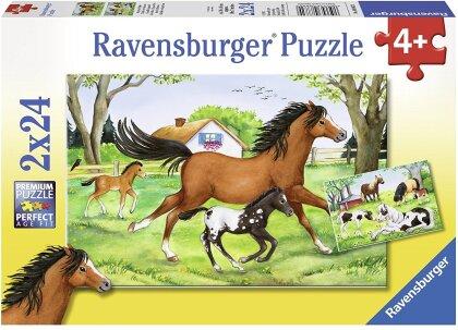 Welt der Pferde - 2 x 24 Teile Puzzles