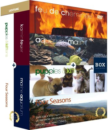 Feu de cheminée / aquarium / chiots et chatons / quatre saisons - Box (4 DVDs)